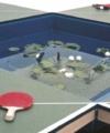 Ping Pond play