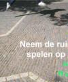 Spelenopstraat-site.nl