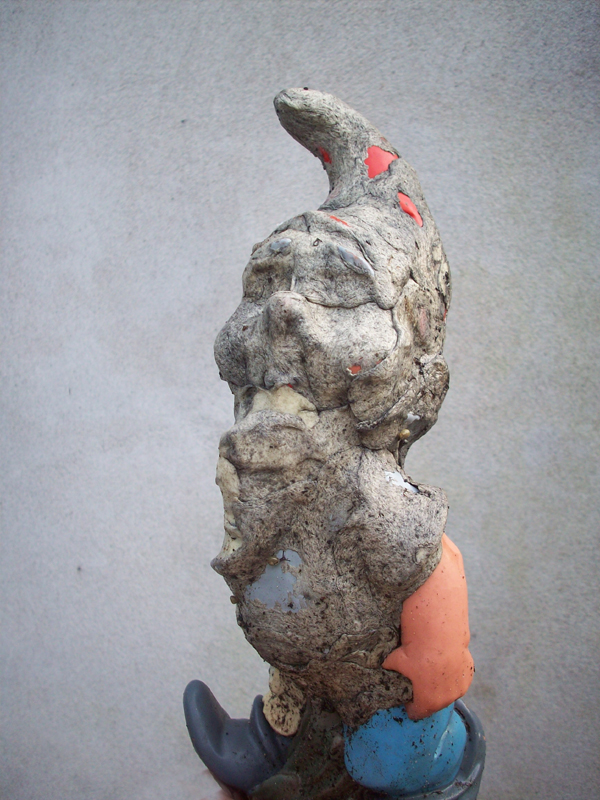 Everdien Breken gnome 01 061110