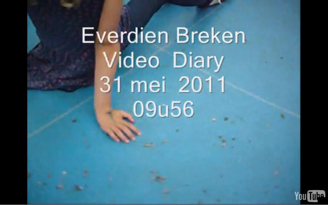 video diary [2]