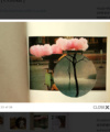 Photo book algorithm [Colour]