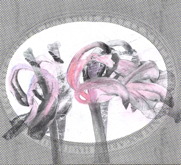 Medaillon  01