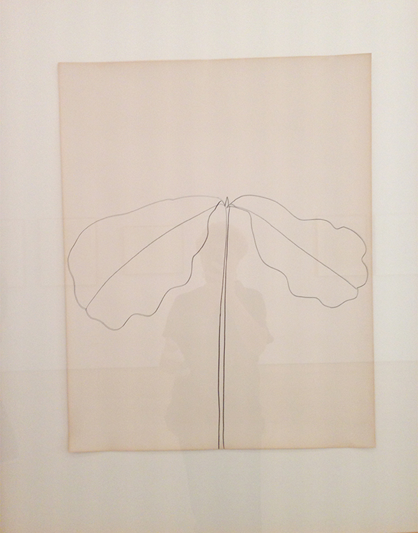 ellsworth-kelly-oak-leaves-drawing-kl